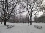 Saint James Park, Jan 8 2011